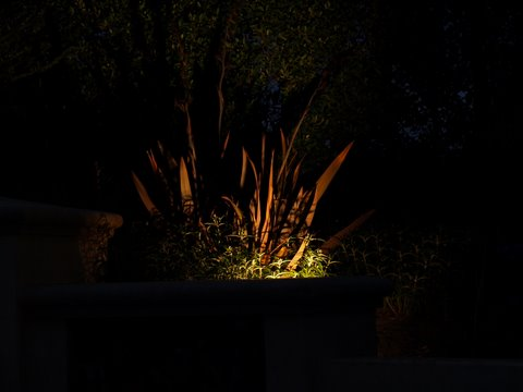moorpark landscape lighting dramatic lighting